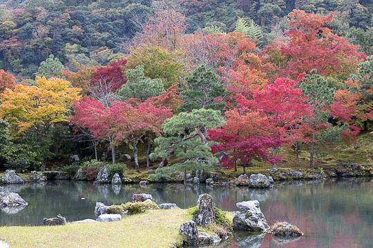 Japan - copie 2